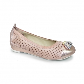 Farrell Perforated Pump